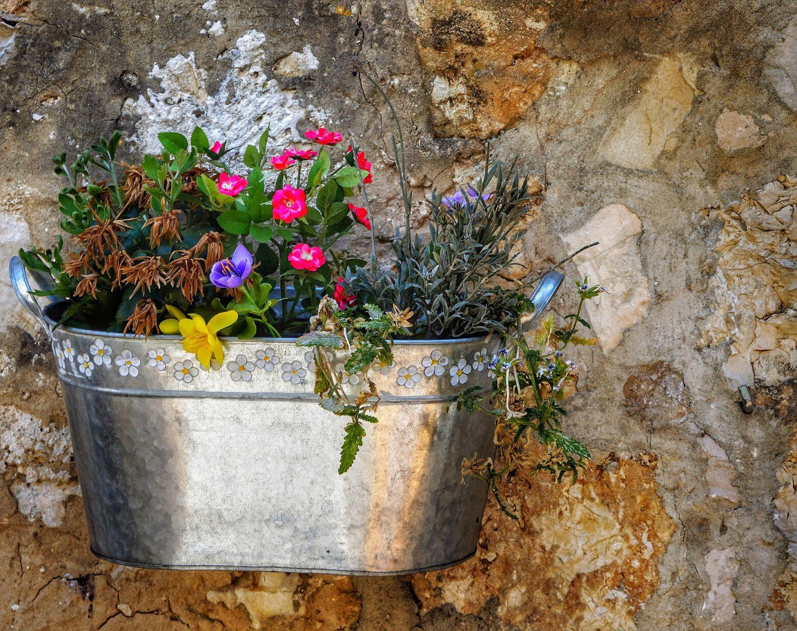 Blumengruß fürs Fensterbrett – AUSGEBUCHT